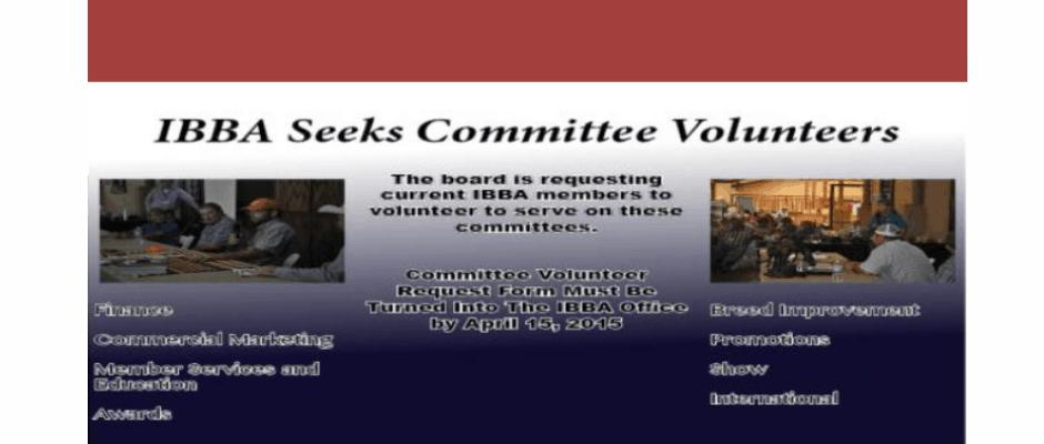 IBBA Seeks Committee Volunteers