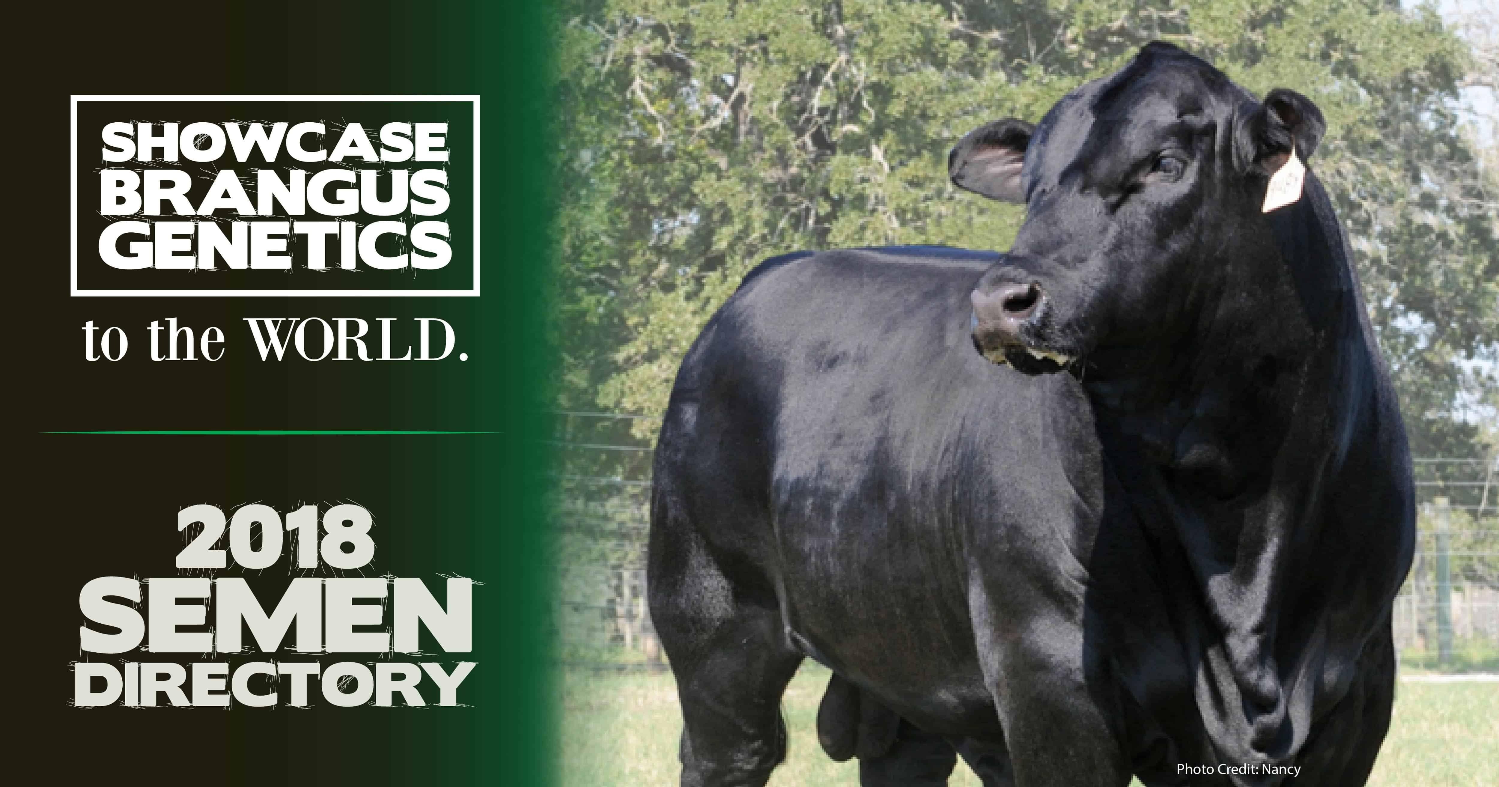 ibba news  bull listings for 2018 semen directory now